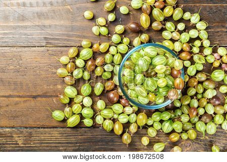 Ripe gooseberry is scattered around the gooseberry in a glass plate space for text
