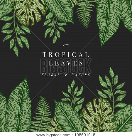 Tropical palm leaves. Jungle design background or poster template. Vector illustration engraved jungle leaves.