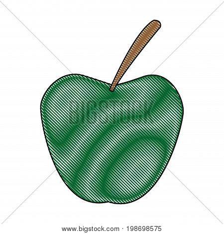 apple fruit fresh nutrient vitamins food vector illustration