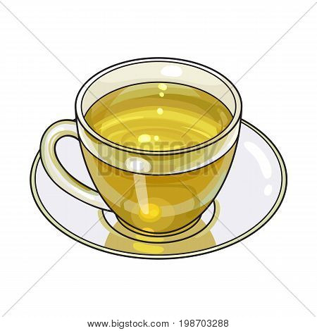 Green tea drink in transparent glass mug and saucer, sketch vector illustration isolated on white background. Hand drawn green tea drink in glass cup and saucer