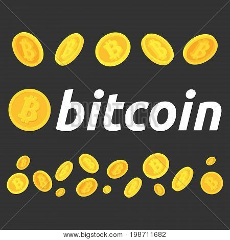 A set of bitcoins. Different poses of bitcoins.