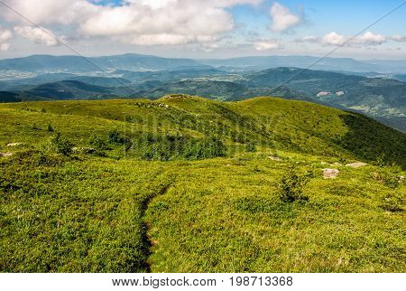 Footpath Through Grassy Mountain Meadow