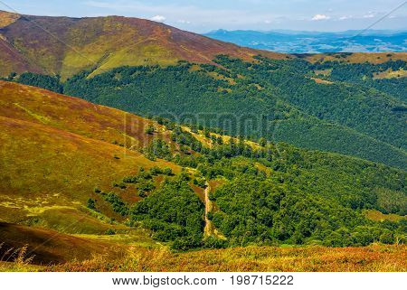 Beautiful Carpathian Mountain Range