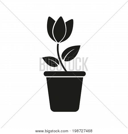 Simple icon of potted home plant. Houseplant, flowerpot, potted flower. Garden concept. Can be used for topics like gardening, horticulture, plants