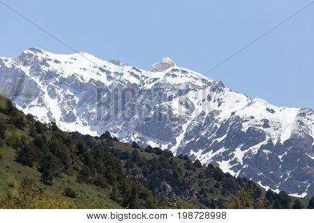 the snowy peaks of the Tien Shan