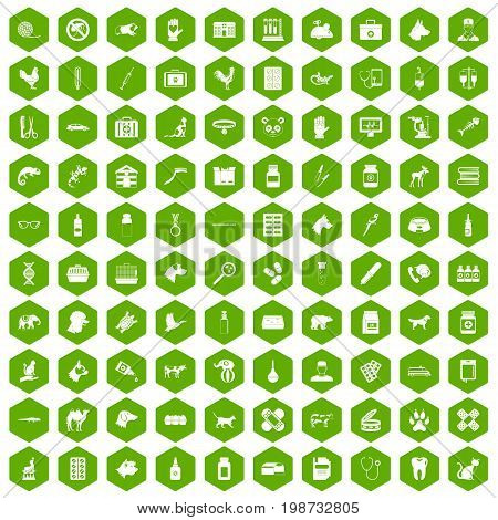 100 veterinary icons set in green hexagon isolated vector illustration