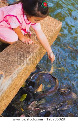 Trat, Thailand - January 9, 2017: A girl (unidentified) feeds fish in a temple pond of Wat Phai Lom. Feeding fish is a significant Thai tradition.