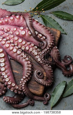 Seafood Octopus. Whole Fresh Raw Octopus On Wooden Board With Lemon And Laurel, Gray Slate Backgroun