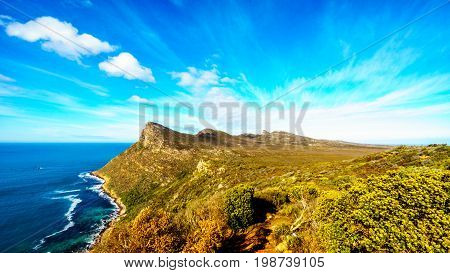 The wind swept peaks along the shoreline and landscape  near Cape Point of the Cape Peninsula in the Western Cape province of South Africa under blue sky