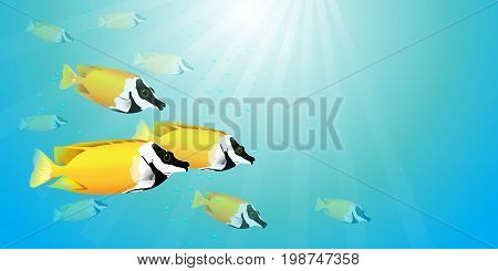Vector illustration of beautiful yellow fish herd, yellow fox face or rabbitfish, in blue sea with bubbles and light.