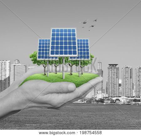 Solar cell with tree and grass in man hands over black and white modern city tower and river Ecology power and energy concept