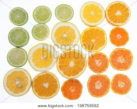 Limes lemons oranges and mandarin citrus fruit arranged in a tonal color gradient on white background