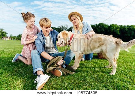 Happy Young Family Stroking Dog While Sitting On Green Grass At Park