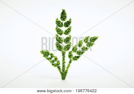 Green Wheat Sign Isolated On White Background. 3D Illustration.