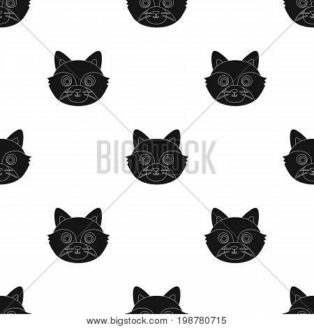 Raccoon muzzle icon in black design isolated on white background. Animal muzzle symbol stock vector illustration.