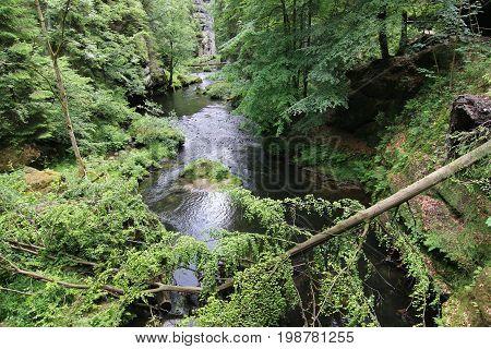 Fallen tree trunk - Gorges on the Kamenice River Czech Republic. Gorges on the Kamenice River is a complex of rocky ravines in Bohemian Switzerland in the Czech Republic