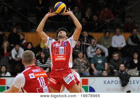 KAPOSVAR, HUNGARY - JANUARY 22: Guilherme posts the ball at a Middle European League volleyball game Kaposvar (HUN) vs. HotVolleys Wien (AUT), January 22, 2010 in Kaposvar, Hungary.