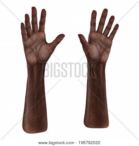 Old african hands on a white background. 3D illustration