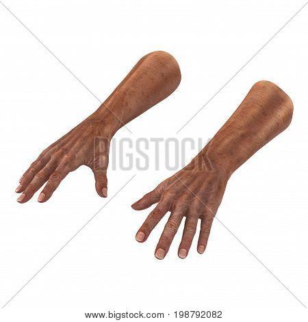 Wrinkled on old man hands skin on white background. 3D illustration