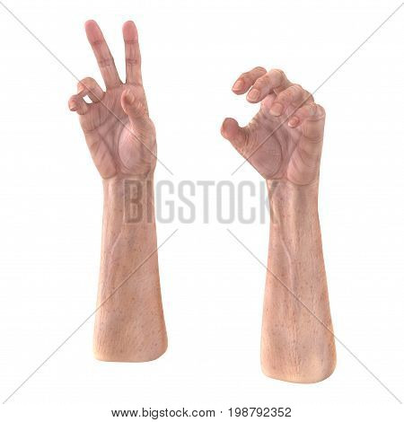 Old hand on a white background. 3D illustration