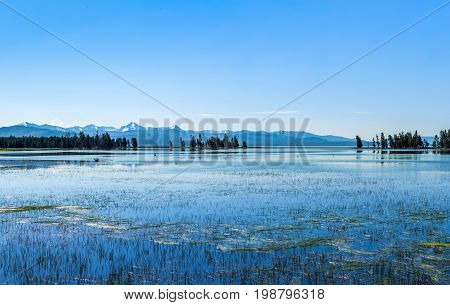 View of Yellowstone Lake at Yellowstone National Park in Wyoming