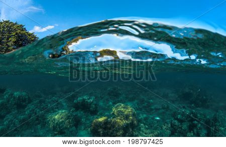 Split landscape with sea and sky. Sea water double photo. Undersea view of coral. Tropical island seashore nature. Above and below sea waterline. Blue seawater wave. Coral reef panorama. Exotic island