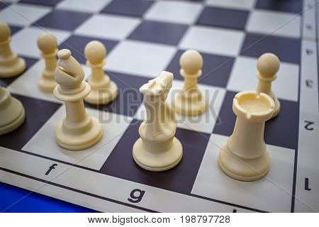 White chess pieces on chessboard close up view.