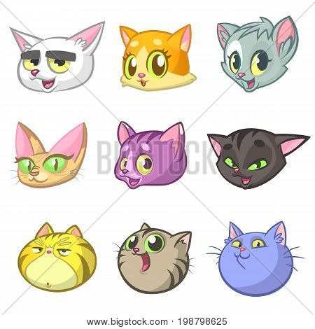 Cartoon Illustration of Different Happy Cats ot Kittens Heads Collection Set. Vector pack of colorful cats icons. Cartoon sphynx Maine Coon siamese british and domestic