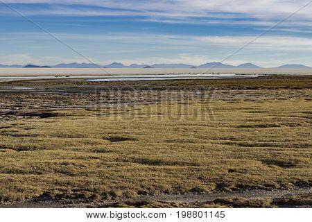 From Coqueza village in Uyuni there is anamazing view of Uyuni Salt Flates.