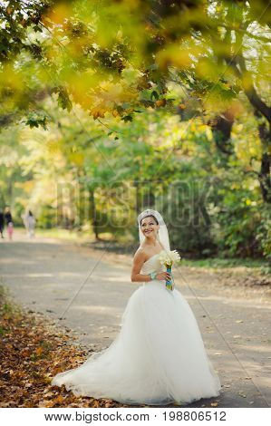 Brunette Bride With Long Veil One In The Park