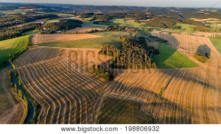 Aerial view of outdoor landscapes, a row of trees throwing long shadows, a balloon flies away. Summer evening on rural.