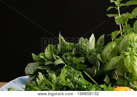 Various kind of fresh herbs on a saturated black background. Big branches of organic parsley and green basil on the table. Healthful, natural and rustic herbs for salads.