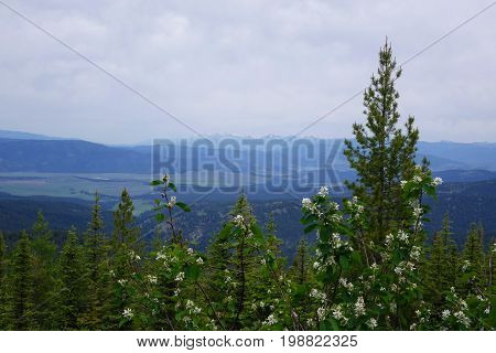 View from a mountain ridgetop near the ghost-town of Garnet, Montana.