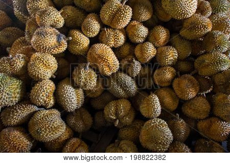 Group of durian in the market. Close up of peeled durian.