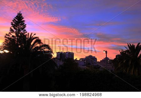 Colorful beautiful sunset at tropical vacation spot. Palm trees silhouette, purple,orange, pink and yellow colored sky background view. Sun going down on summer evening scene with empty copy space