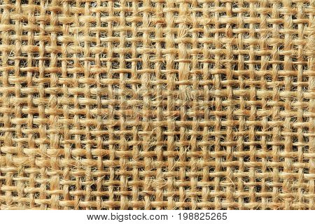 Ramie Texture and Background Close up view