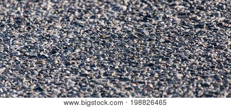 Old black asphalt on the road as background
