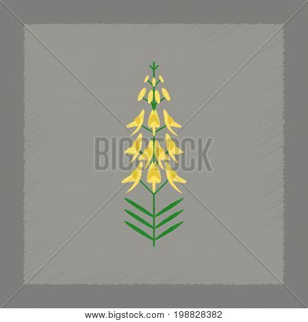 flat shading style icon of plant Euphorbia