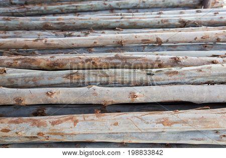 Slide Wood In Warehouse