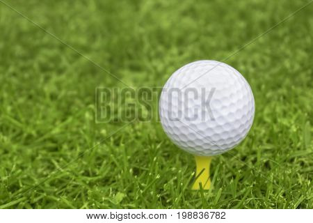 Golf ball on a yellow tee with a blurred background for copy space