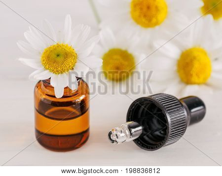 Essential oil in glass bottle with pipette and fresh chamomile flowers, beauty treatment. Spa concept. Fragrant oil of chamomile flowers on white wooden table. Copy space.