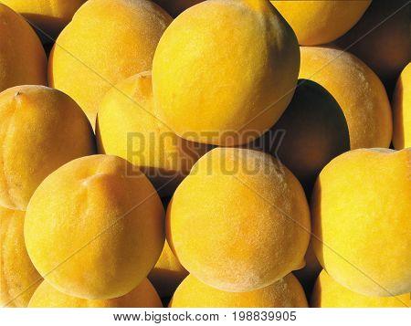 Peaches or  Prunus  Persica, originated  in China 36cd