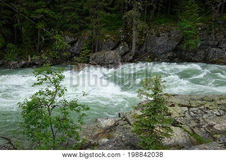 A white-water stream flows through Montana's Glacier national park.