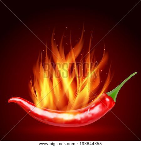 Red hot natural chili pepper pod realistic image with shadow for culinary products and recipes vector illustration. Realistic Red hot natural chili pepper. flaming red chili pepper on a red background