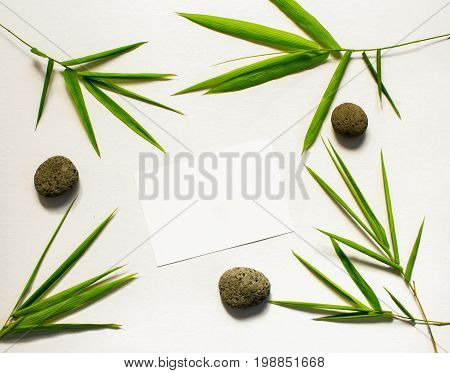 Zen flat lay with green leaf and stone. Bamboo leaf and sea pebble on white background. Bamboo decor. Spa or beauty banner template with place for text. Blank card with tropical leaves. Bamboo design