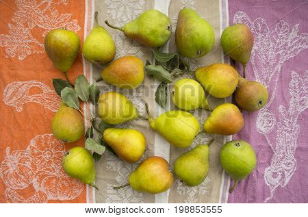 Bright ripe pears on a summer thematic background