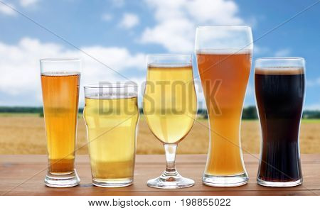 brewery, drinks and alcohol concept - different types of beer in glasses on table over cereal field and blue sky background
