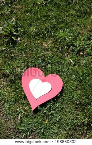 heart paper in the grass