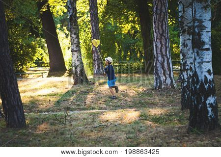 little boy with hat and butterfly net run in wood or park summer day