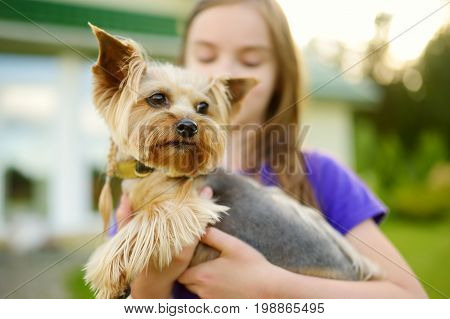 Cute Little Girl Holding Her Funny Yorkshire Terrier Dog